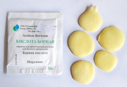 bornaya_kislota_ot_tarakanov_recepty_sredstv_dlya_bor_by-1