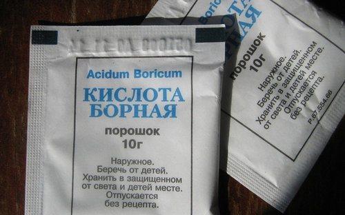 bornaya_kislota_ot_tarakanov_recepty_sredstv_dlya_bor_by-2