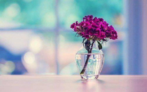 Как помыть вазу с тонким горлышком