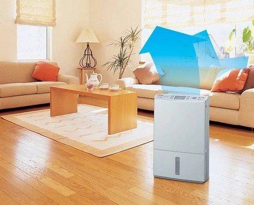 Бытовой осушитель воздуха для дома отзывы