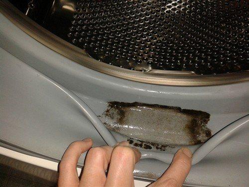 Запах плесени в стиральной машине как избавиться