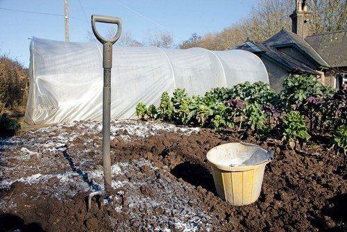 Обработка почвы в теплицах