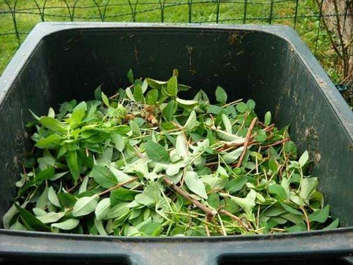 Компоненты для компоста