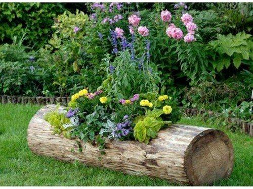Цветник из ствола дерева