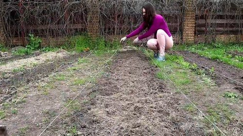 укрытие травой